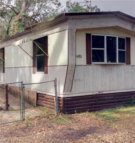 11480 Cr 675W, Webster, FL 33597 (MLS #O5546409) :: The Duncan Duo Team