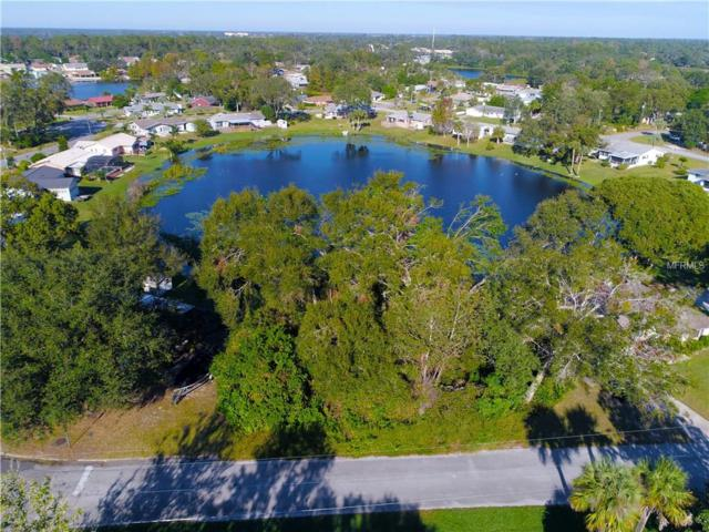 2 Camelia Drive, Debary, FL 32713 (MLS #O5546825) :: Mid-Florida Realty Team