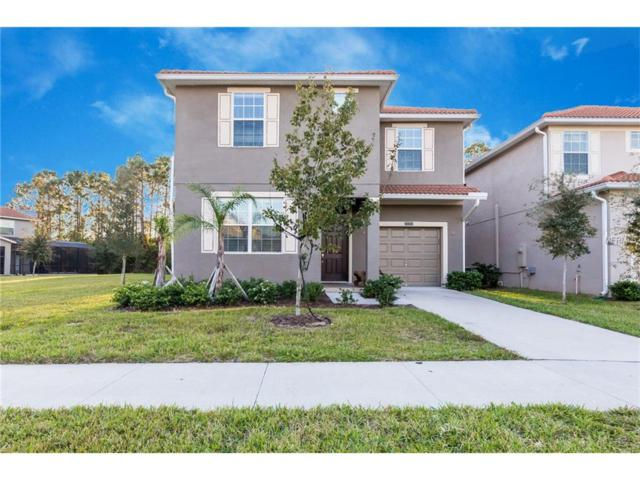 8800 Bamboo Palm Court, Kissimmee, FL 34747 (MLS #O5548590) :: RE/MAX Realtec Group