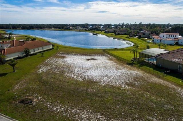 10736 Lago Bella Drive, Orlando, FL 32832 (MLS #O5549401) :: The Duncan Duo Team