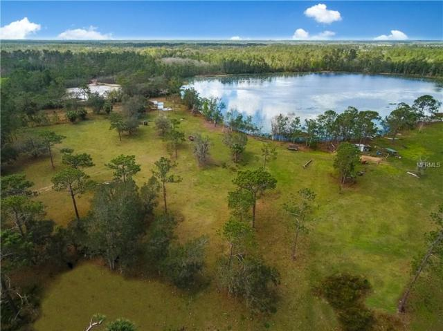 1100 Willingham Road, Chuluota, FL 32766 (MLS #O5558079) :: Griffin Group