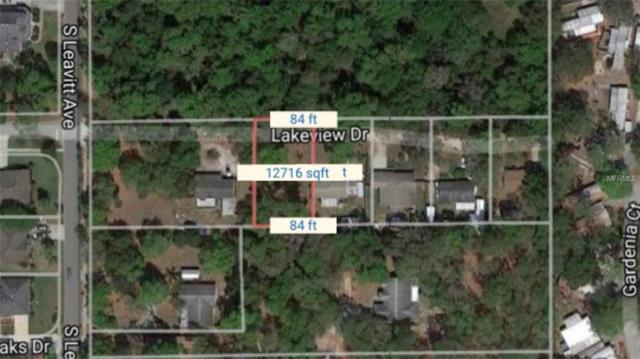 735 Lakeview Avenue, Orange City, FL 32763 (MLS #O5563402) :: Premium Properties Real Estate Services