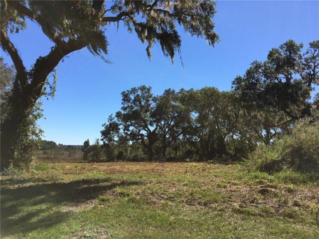 447 Long And Winding Road, Groveland, FL 34737 (MLS #O5570555) :: The Duncan Duo Team