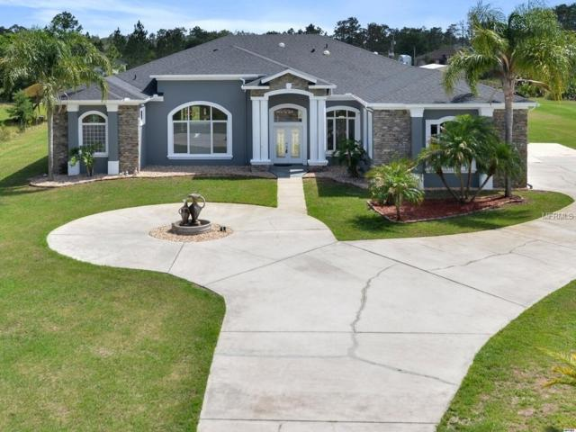 19720 Robertson Street, Orlando, FL 32833 (MLS #O5701140) :: KELLER WILLIAMS CLASSIC VI