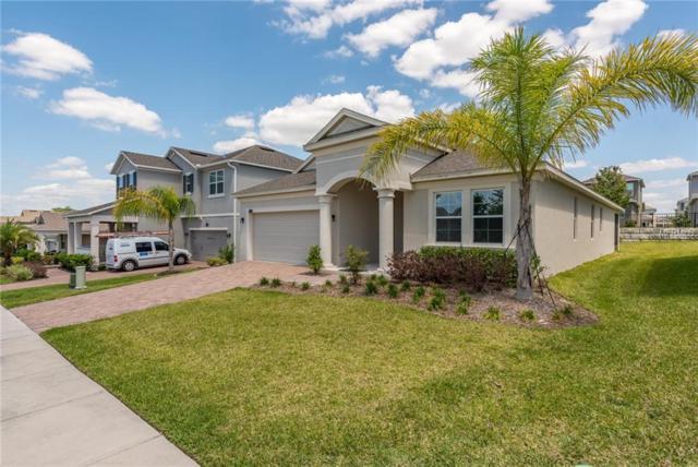 15791 Citrus Grove Loop, Winter Garden, FL 34787 (MLS #O5701274) :: The Duncan Duo Team