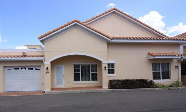 243 David Walker Drive E-3, Tavares, FL 32778 (MLS #O5702776) :: Team Bohannon Keller Williams, Tampa Properties