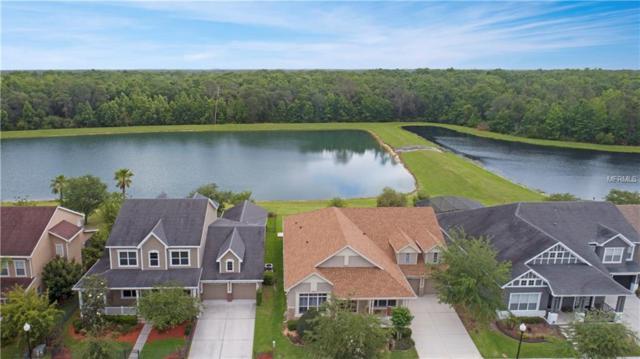 4608 Atwood Drive, Orlando, FL 32828 (MLS #O5703188) :: KELLER WILLIAMS CLASSIC VI