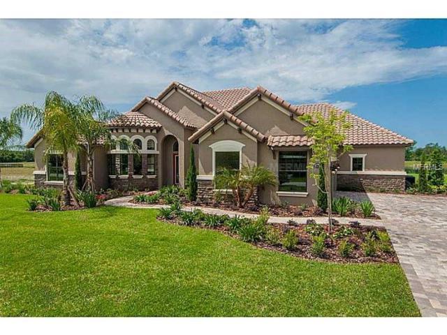 10814 Lago Bella Drive, Orlando, FL 32832 (MLS #O5704662) :: Delgado Home Team at Keller Williams