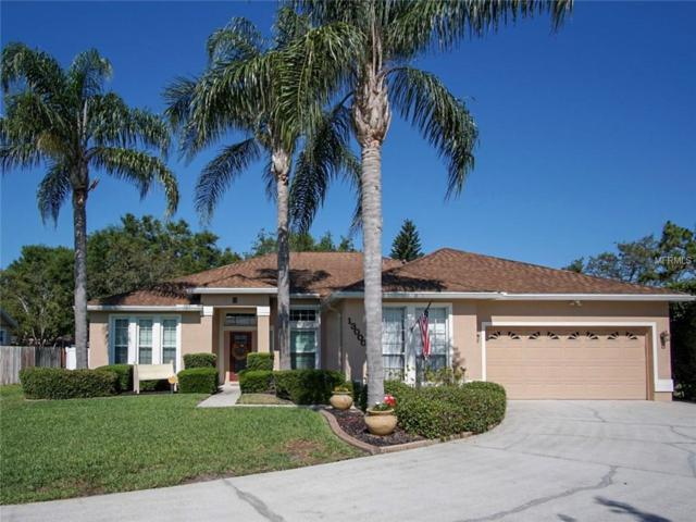 13000 Jewelstone Way, Orlando, FL 32828 (MLS #O5705539) :: GO Realty