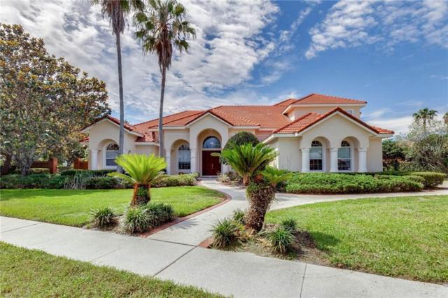 8712 Scenic Oak Court, Orlando, FL 32836 (MLS #O5711507) :: Team Suzy Kolaz