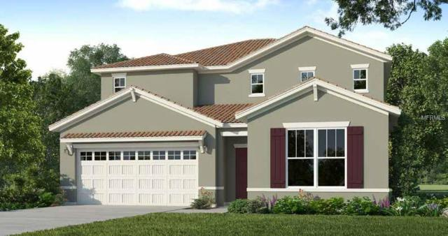 5285 Oakbourne Avenue, Davenport, FL 33837 (MLS #O5712454) :: The Duncan Duo Team