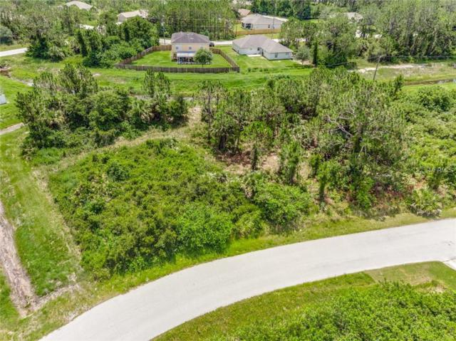 2133 Rockabye Avenue SE, Palm Bay, FL 32909 (MLS #O5715761) :: The Duncan Duo Team