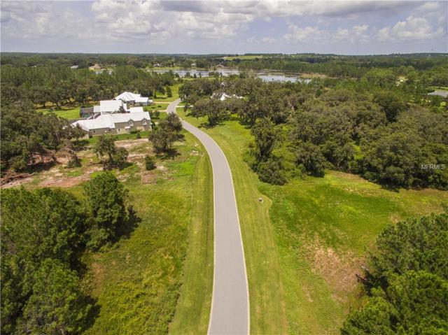 438 Long And Winding Road, Groveland, FL 34737 (MLS #O5716011) :: The Duncan Duo Team