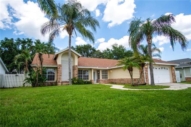 3113 Timucua Circle, Orlando, FL 32837 (MLS #O5716514) :: G World Properties