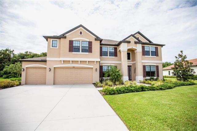 2915 156TH Terrace E, Parrish, FL 34219 (MLS #O5717734) :: The Light Team