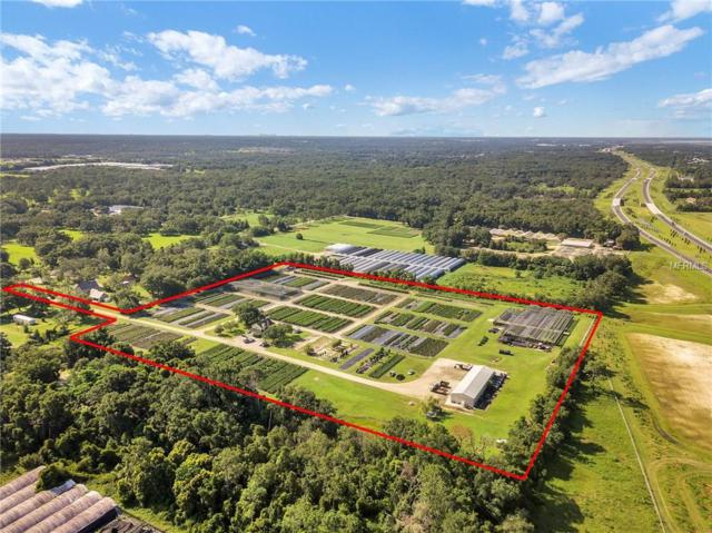 3960 Plymouth Sorrento Road, Apopka, FL 32712 (MLS #O5719347) :: Mark and Joni Coulter   Better Homes and Gardens