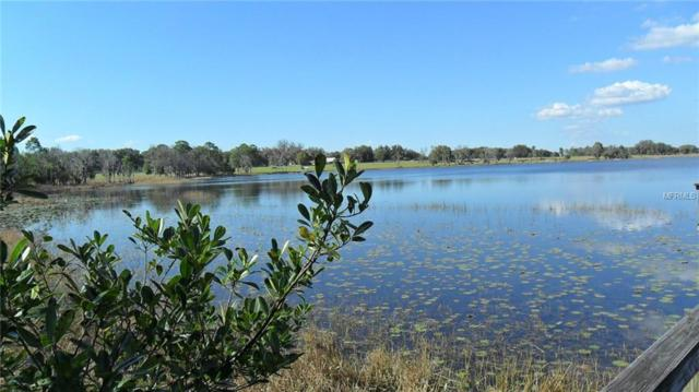 Lot 5 County Road 439, Umatilla, FL 32784 (MLS #O5719580) :: RE/MAX Realtec Group