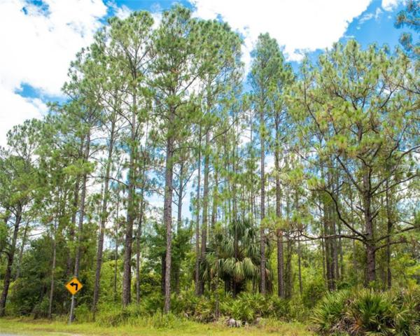 N Goodman Road Lot 313, Kissimmee, FL 34747 (MLS #O5719904) :: Zarghami Group