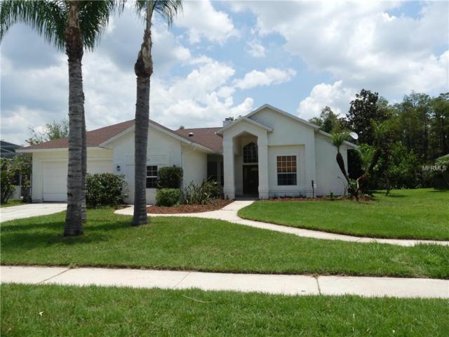 14507 Astina Way, Orlando, FL 32837 (MLS #O5720362) :: Bustamante Real Estate