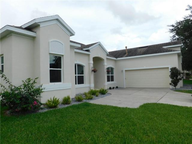 2951 Majestic Isle Drive, Clermont, FL 34711 (MLS #O5722020) :: Bustamante Real Estate