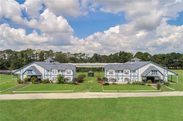 Address Not Published, Chuluota, FL 32766 (MLS #O5725525) :: Griffin Group