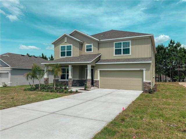 10276 Harmony Ridge Drive, Clermont, FL 34711 (MLS #O5726313) :: Burwell Real Estate