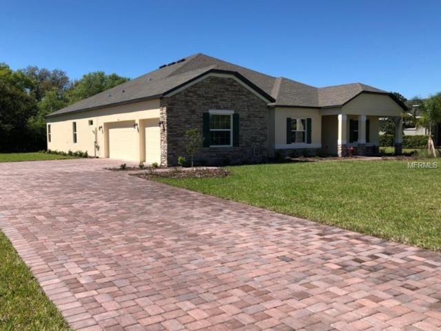 15811 29TH Street E, Parrish, FL 34219 (MLS #O5729425) :: Team Bohannon Keller Williams, Tampa Properties