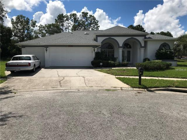 22736 Arborglen Court, Lutz, FL 33549 (MLS #O5730419) :: Homepride Realty Services