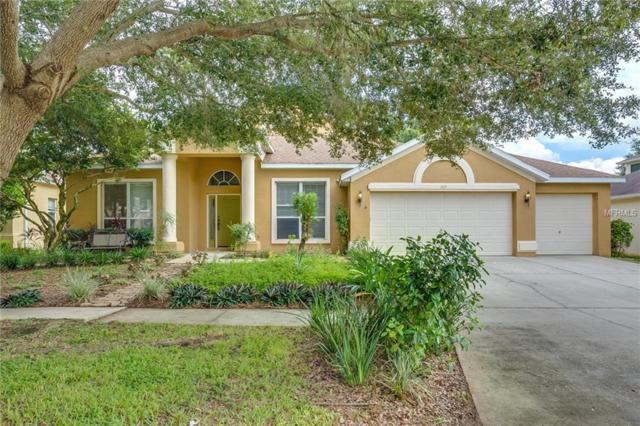 1119 Split Silk Street, Valrico, FL 33594 (MLS #O5730659) :: Premium Properties Real Estate Services