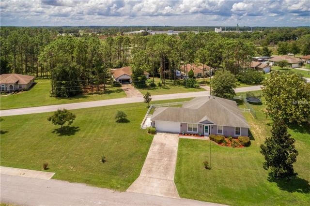 305 N Dixie Drive, Howey in the Hills, FL 34737 (MLS #O5730712) :: The Duncan Duo Team