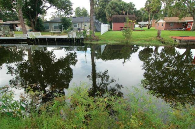 Blue Heron Way, Leesburg, FL 34788 (MLS #O5738100) :: The Price Group