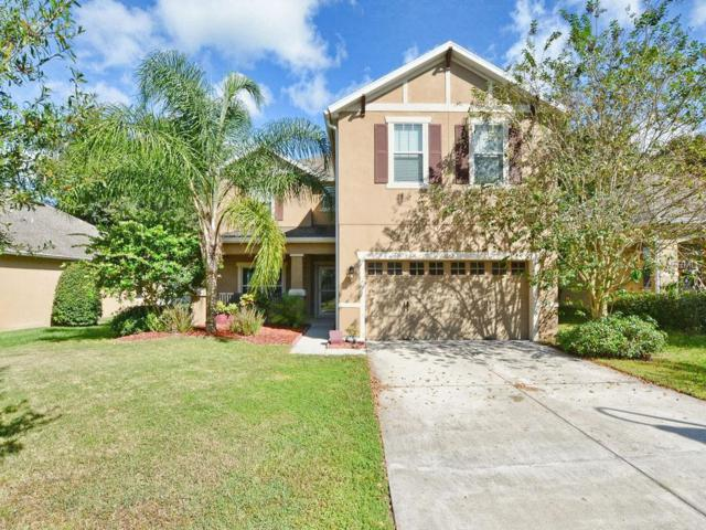 30312 Cheval Street, Mount Dora, FL 32757 (MLS #O5739733) :: Mark and Joni Coulter | Better Homes and Gardens