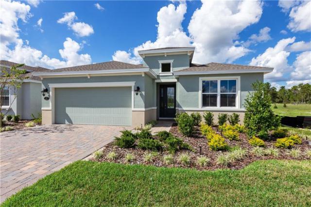 1171 Eggleston Drive, Deland, FL 32724 (MLS #O5740779) :: The Duncan Duo Team