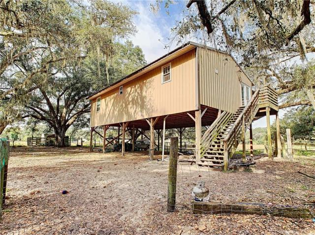 5404 Durant Road, Dover, FL 33527 (MLS #O5741878) :: Mark and Joni Coulter | Better Homes and Gardens