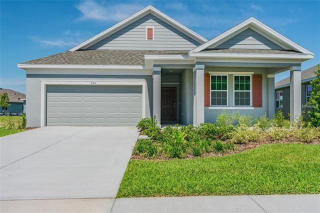 2814 Satilla Loop, Odessa, FL 33556 (MLS #O5752632) :: Griffin Group