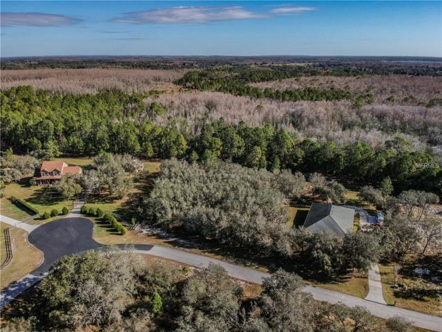 Lot 32 Pompano Drive, Clermont, FL 34711 (MLS #O5755207) :: Griffin Group