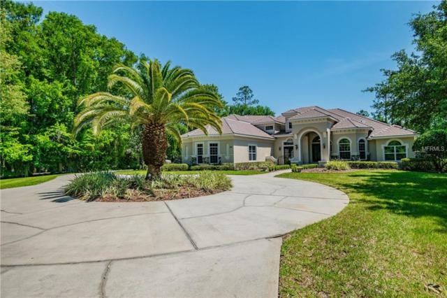 261 New Gate Loop, Heathrow, FL 32746 (MLS #O5755226) :: Alpha Equity Team