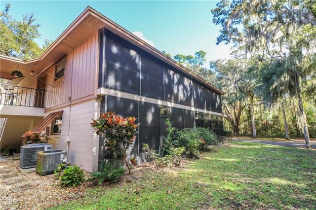 100 Sweetgum Woods Court 14B, Deltona, FL 32725 (MLS #O5756019) :: Premium Properties Real Estate Services