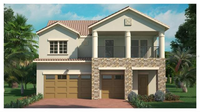 10185 Henbury Street, Orlando, FL 32832 (MLS #O5756386) :: KELLER WILLIAMS ELITE PARTNERS IV REALTY