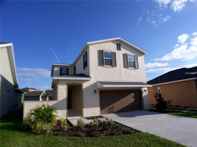 5210 Suncatcher Drive, Wesley Chapel, FL 33545 (MLS #O5757263) :: The Duncan Duo Team