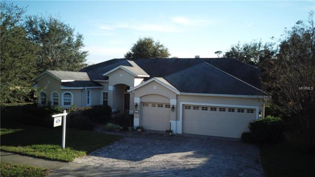 327 Beacon Pointe Drive, Ocoee, FL 34761 (MLS #O5757432) :: The Dan Grieb Home to Sell Team