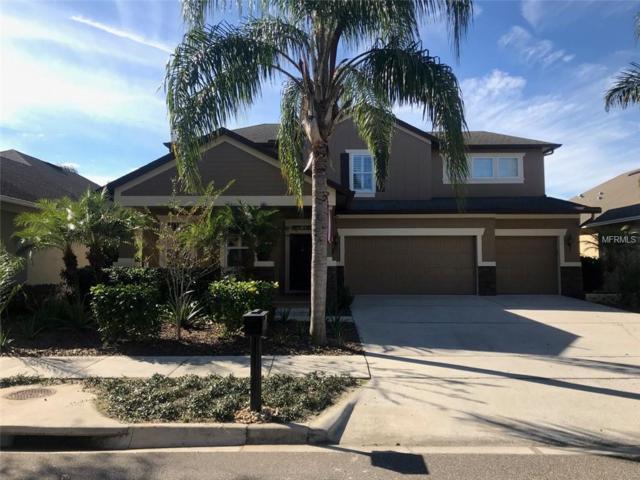 13119 Penshurst Lane, Windermere, FL 34786 (MLS #O5757892) :: Your Florida House Team
