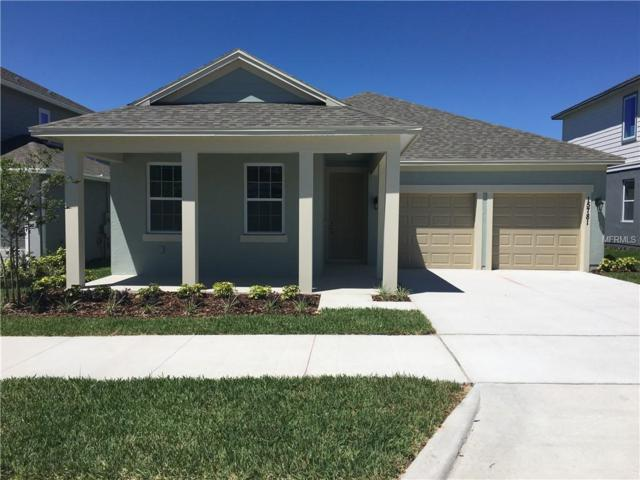 15781 Shaddock Drive, Winter Garden, FL 34787 (MLS #O5760257) :: Lovitch Realty Group, LLC