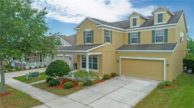 5612 Remsen Cay Lane, Windermere, FL 34786 (MLS #O5760311) :: Bustamante Real Estate