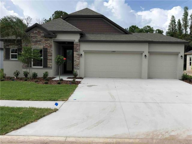 13404 Lakeview Oaks Lane, Riverview, FL 33579 (MLS #O5767116) :: The Duncan Duo Team