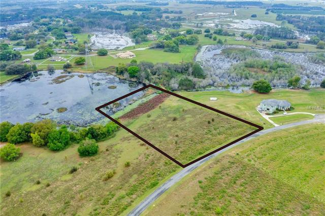 Marsh View Court, Clermont, FL 34711 (MLS #O5767938) :: The Duncan Duo Team