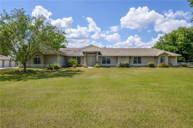 12570 NE Jacksonville Road, Anthony, FL 32617 (MLS #O5771588) :: Bustamante Real Estate