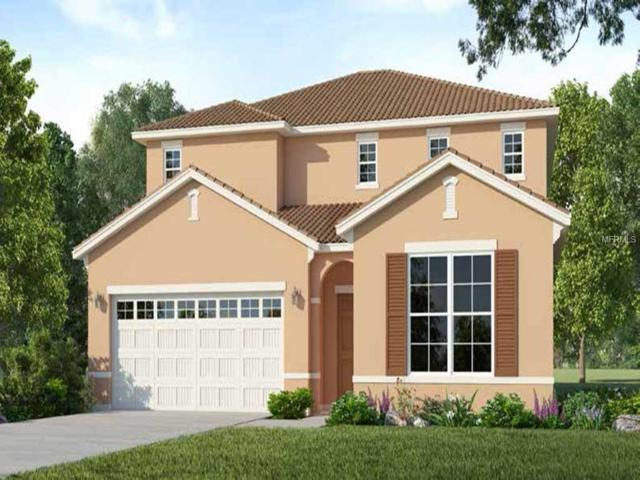 6083 Broad Oak Drive, Davenport, FL 33837 (MLS #O5771591) :: NewHomePrograms.com LLC