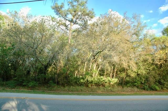 1441 Bird Road, Winter Springs, FL 32708 (MLS #O5771621) :: Alpha Equity Team