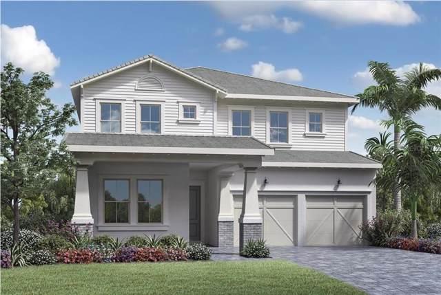 15781 Shorebird Lane, Winter Garden, FL 34787 (MLS #O5773703) :: Team Bohannon Keller Williams, Tampa Properties